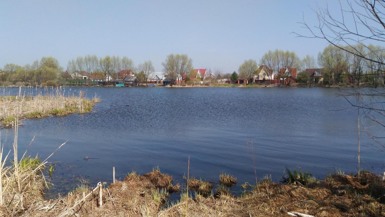 Рыжовский пруд рыбалка 2019