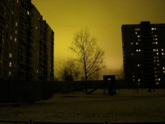 Желтые Ночи