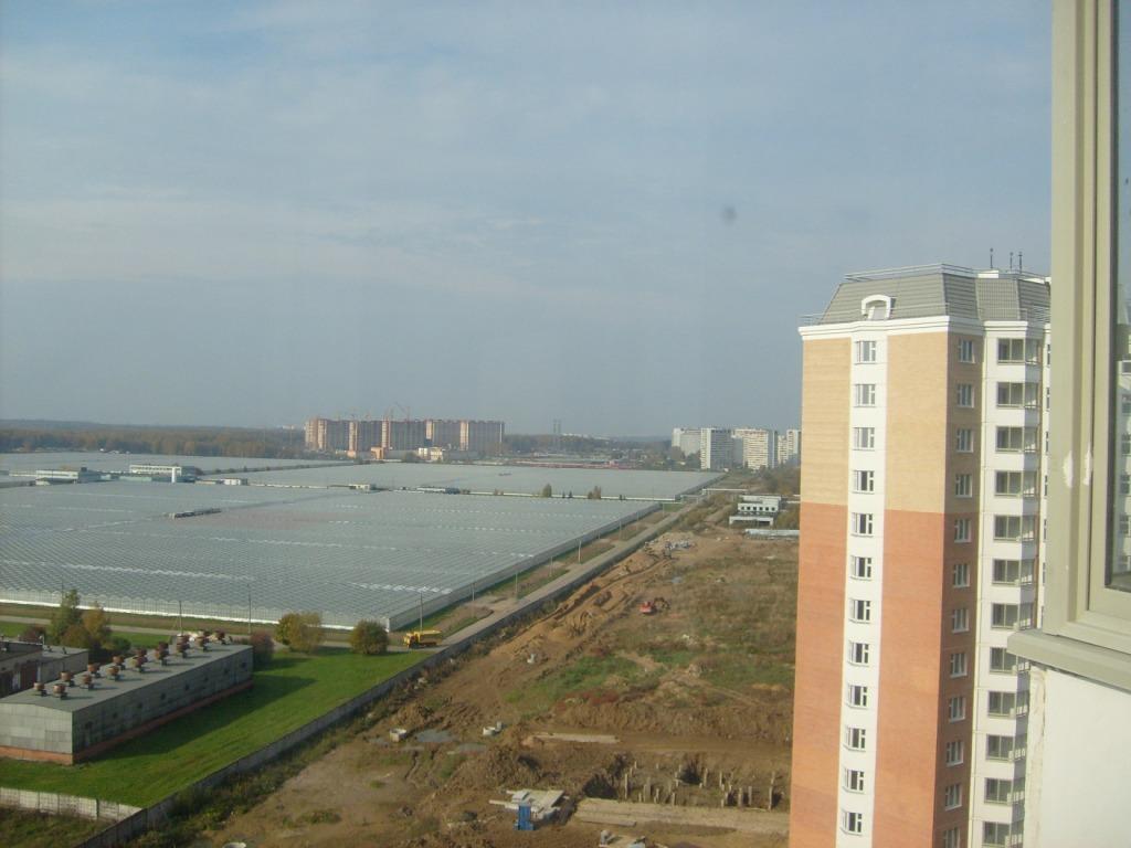 Вид с балкона на парники