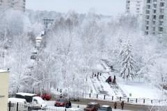 Снег выпал 26.11.08