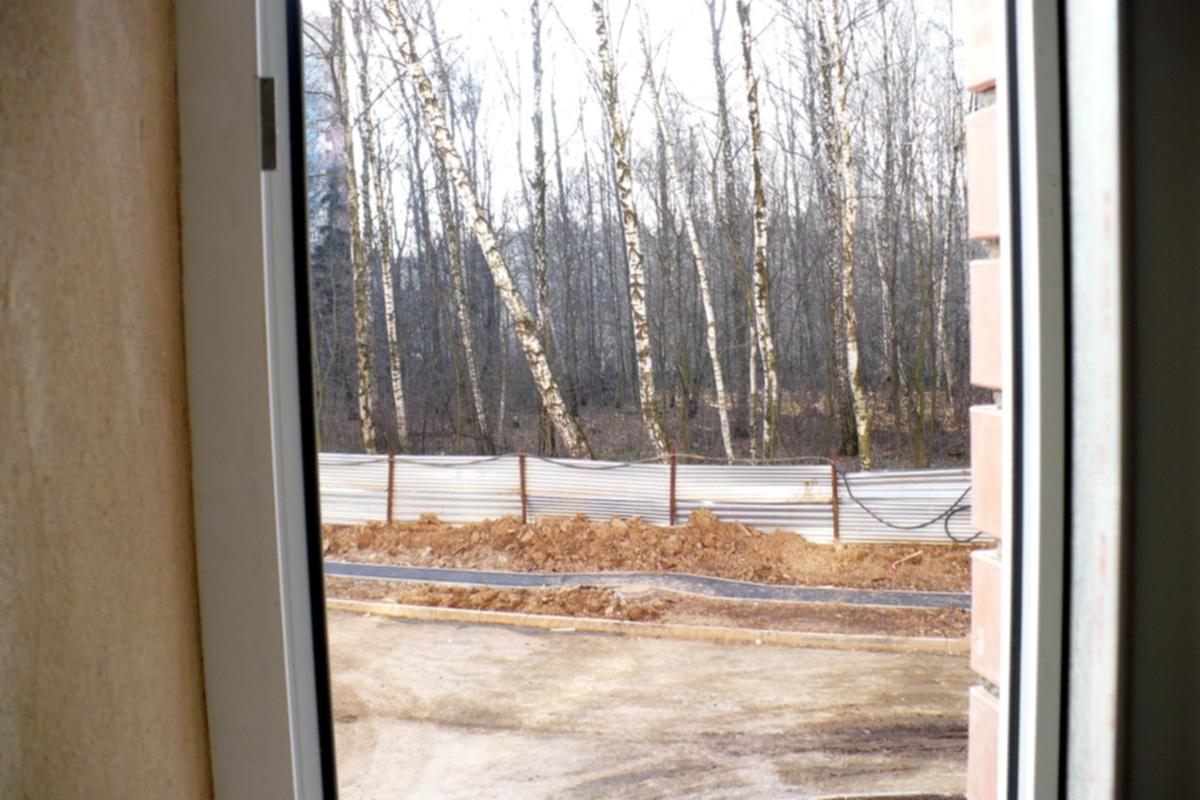 11.11.08  Вид из окна