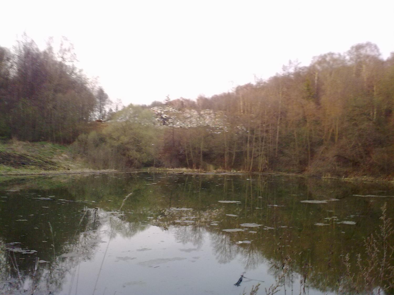 Барановский пруд