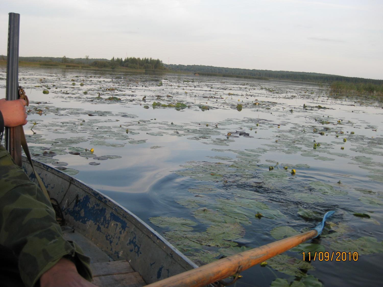 Охота на уток с 10.09 по 12.09 2010г. Калужская область 018.