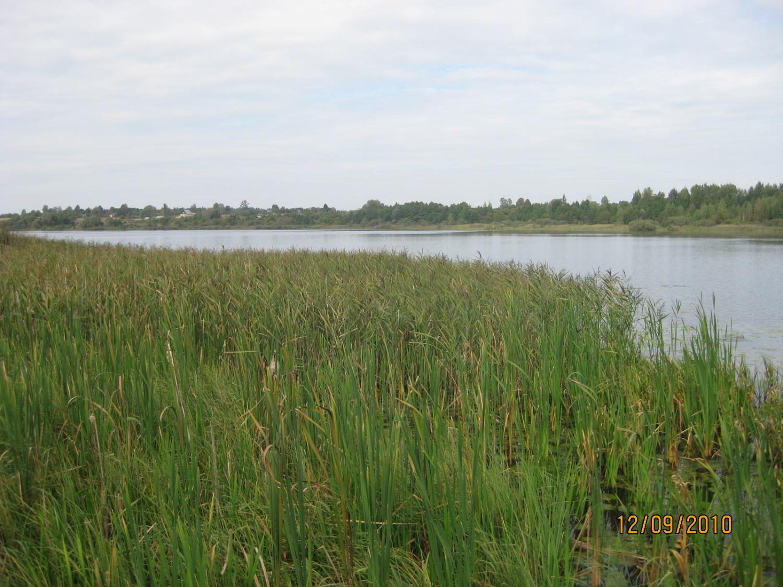 Охота на уток с 10.09 по 12.09 2010г. Калужская область 048.