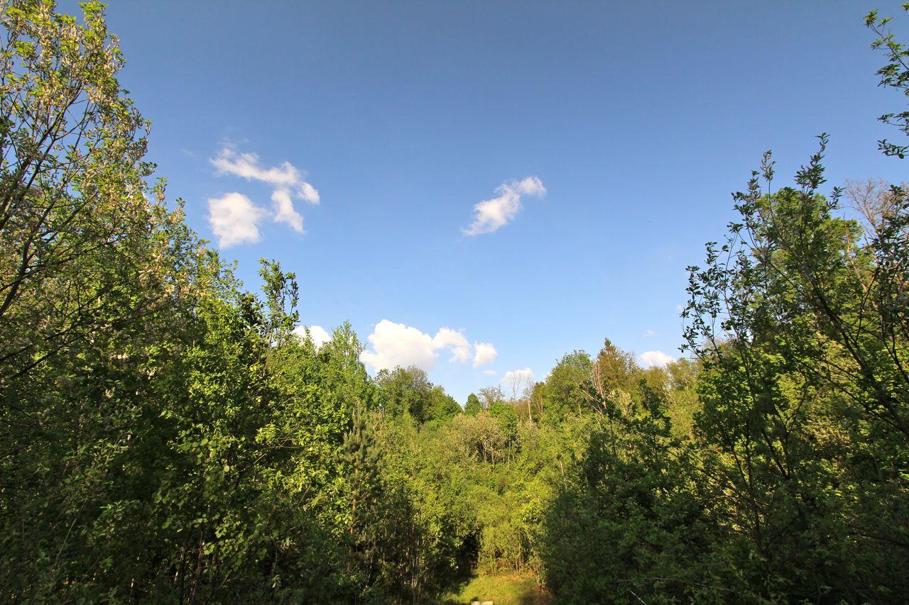 По тропинке в Мешково