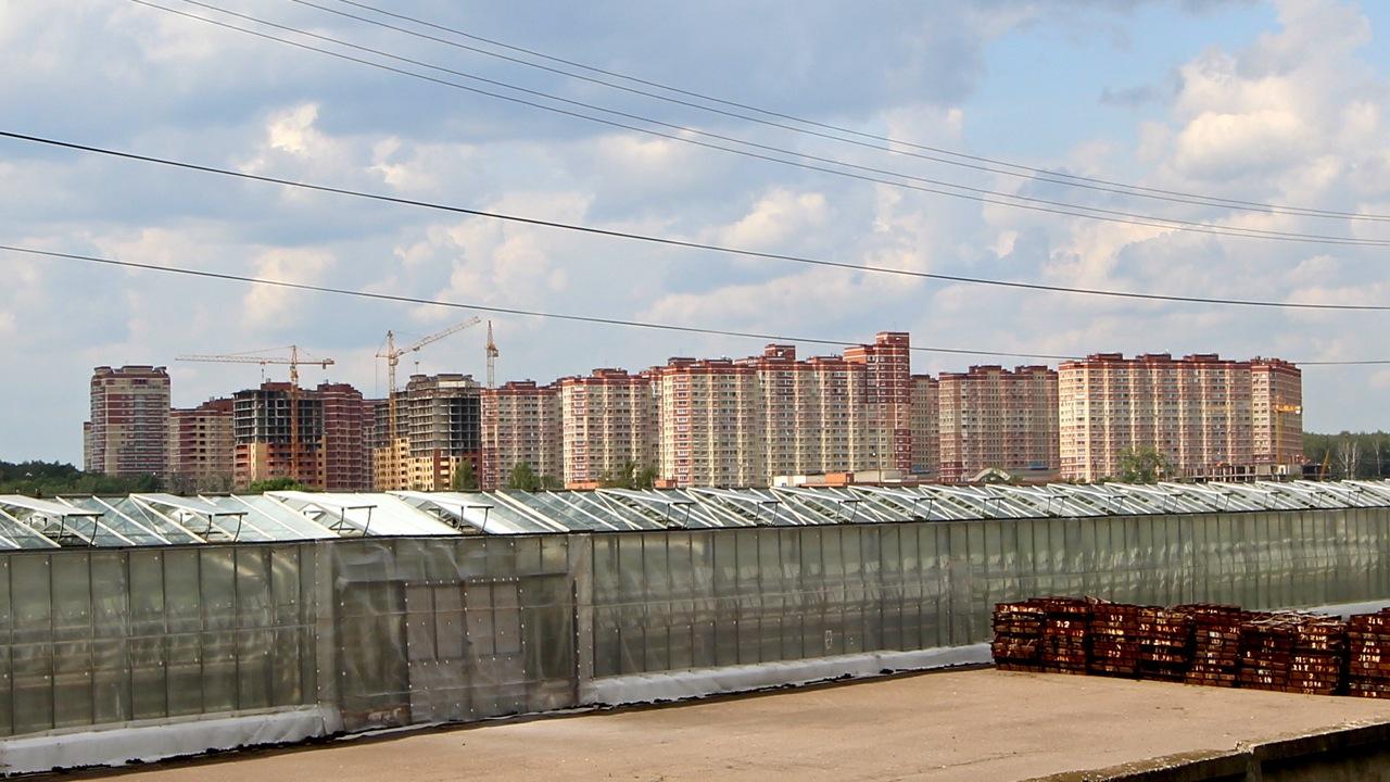 Вид из Града