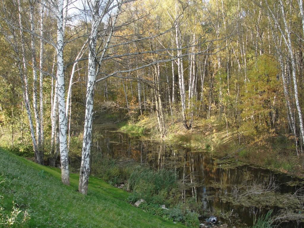Московский осенью 2012