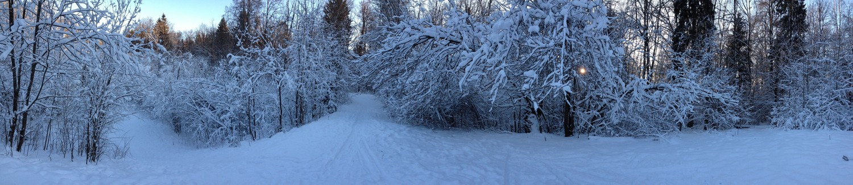 Зимняя панорамка