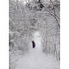 Зимняя горка в лесу