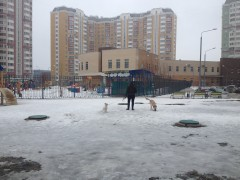 бобиководка на детской площадке