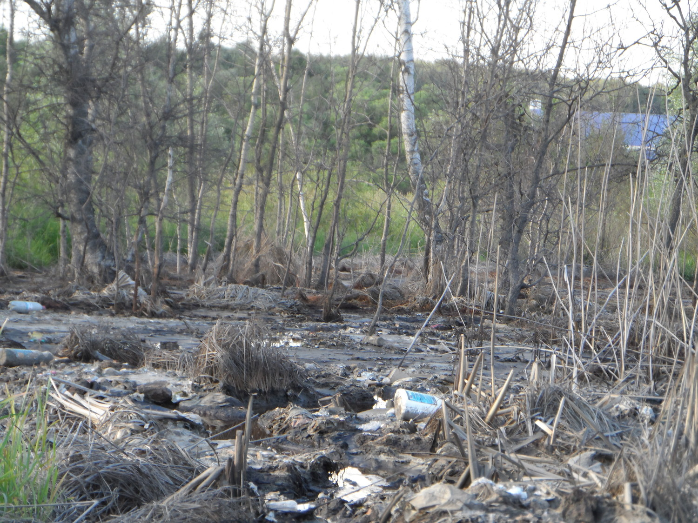 химические вещества в Картмазово у остановки 8.07.2014 г.
