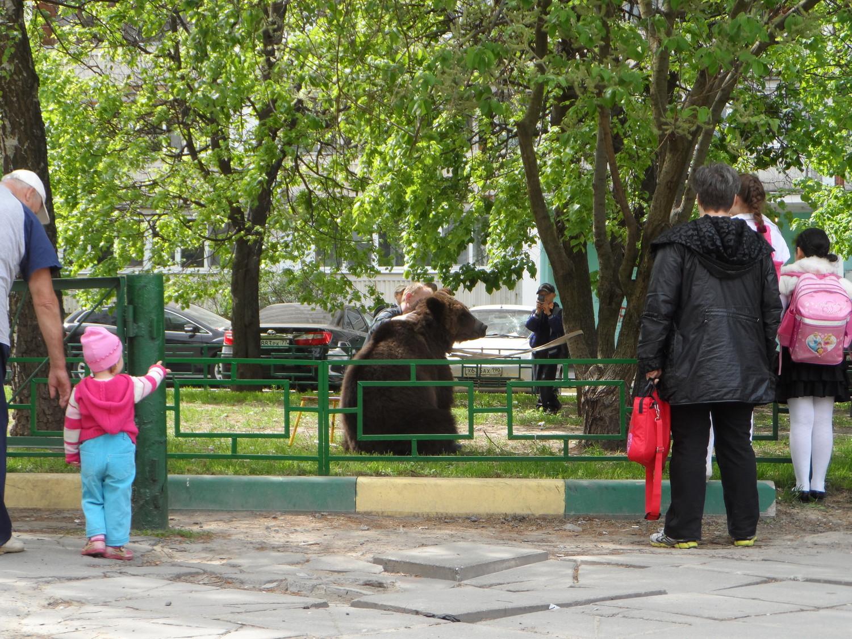"""Символ """"ЕР"""" привязали за ДК """"Московский"""""""
