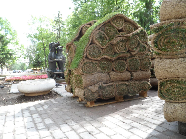 """Укладка газона """"Э.И.З. Проект"""" в 1 мкр., аллея №2"""