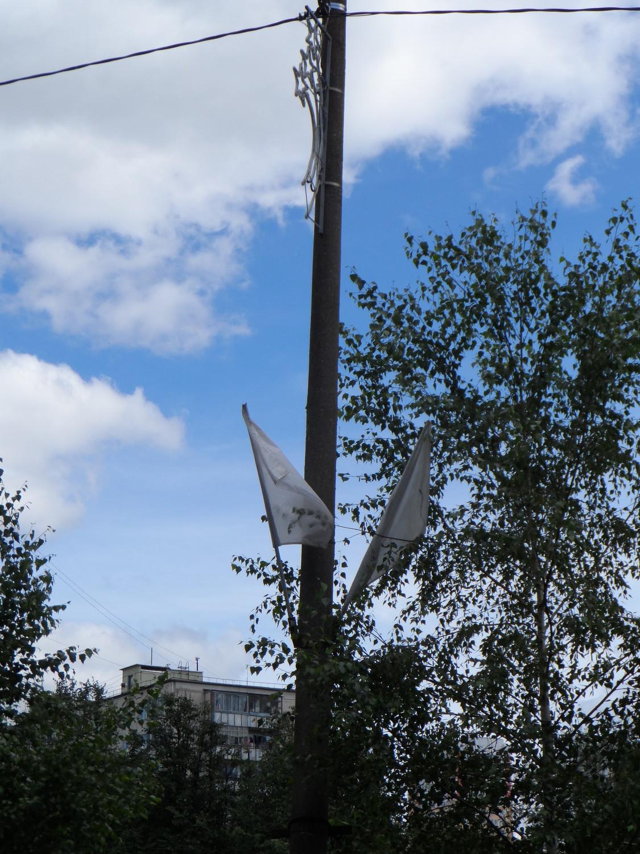 22 июня 2014 года, 1 мкр., г. Московский, аллея № 2, между домами 30 к1 и 30 к2