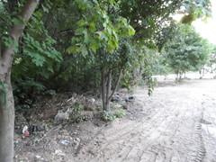 Вдоль леса свалка после благостроителей 2063 школы 30.07.2014 (вырубленные зелёные насаждения и пр.)