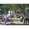 """Сотрудники """"Э,И.З. Проекта"""" за работой 09.06.2014 г."""