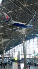 Центральный терминал аэропорта Внуково (реклама авиакомпании)