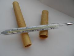 Термометр ртутный с чехлом, цена 38 коп.