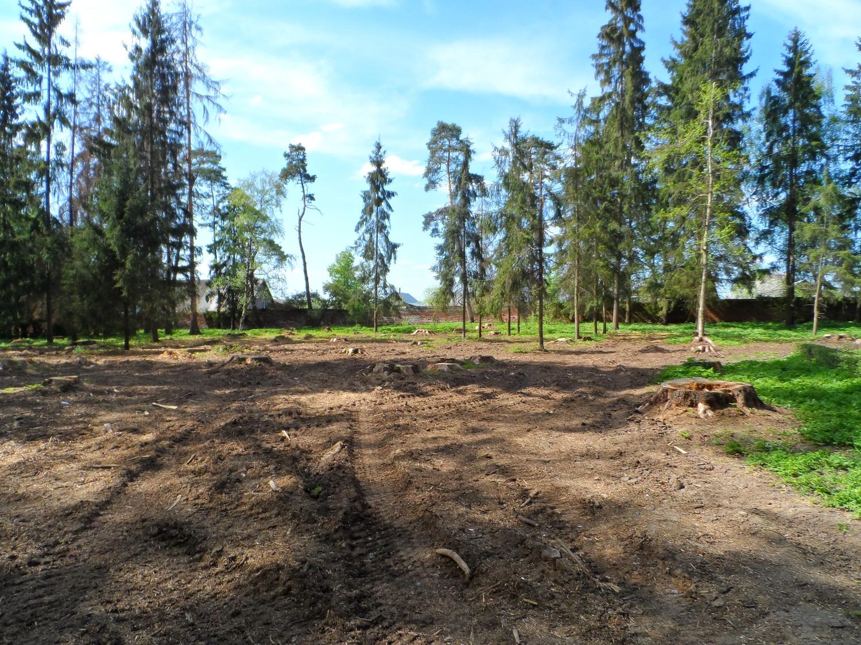 Усадьба Волуево, спилили деревья, наверное будут строить?