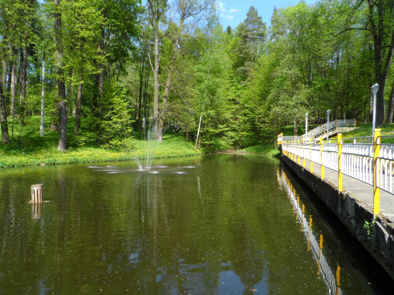 Парк усадьбы Волуево