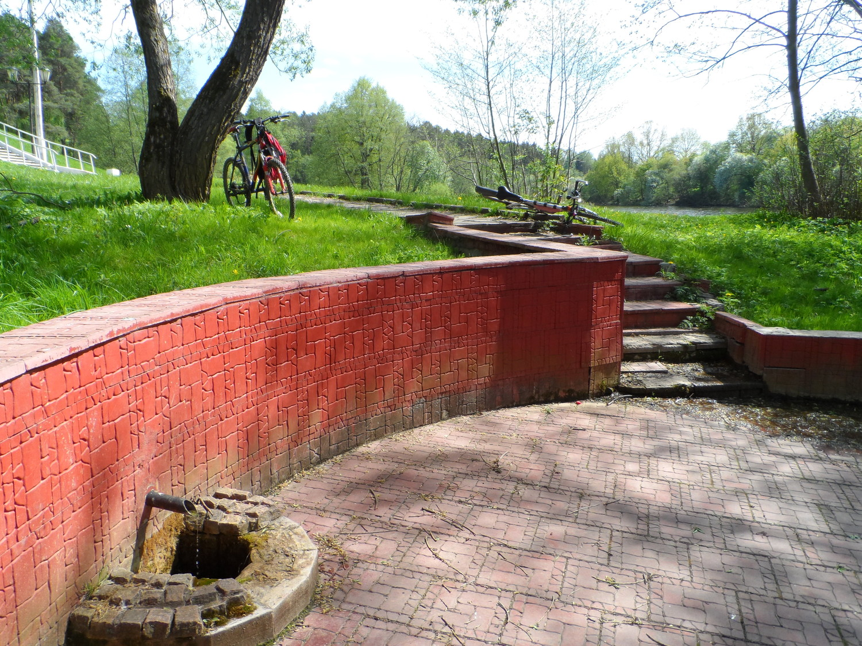 Парк усадьбы Волуево, родник