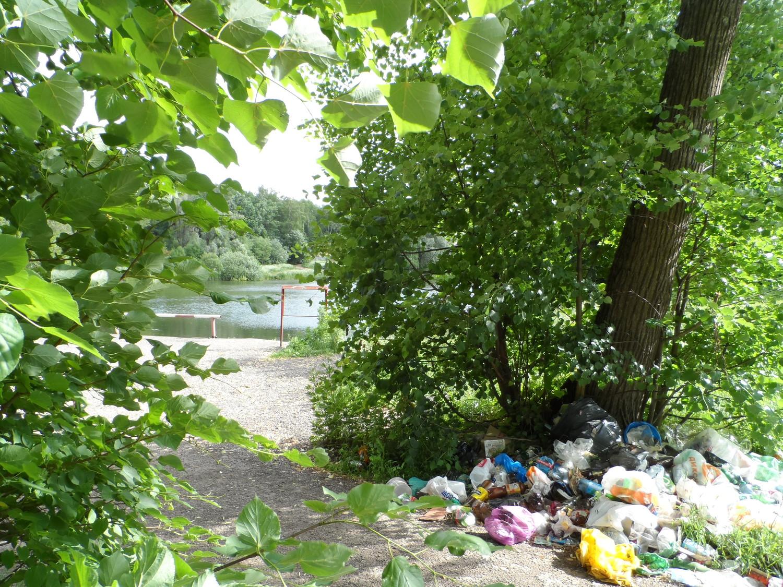 Пруд в Мешково 12.06.2014 г. (мусор!)