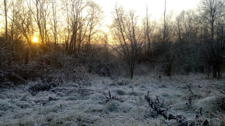 Сезонный пейзаж