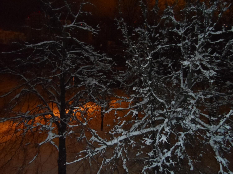 Улица, зимняя ночь, фонарь, (Московский 4.02.2015 г., около 2-х ночи)