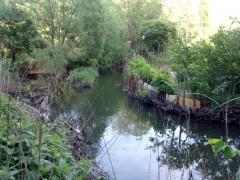"""Долина реки Ликова """"огородная Венеция"""" =)"""