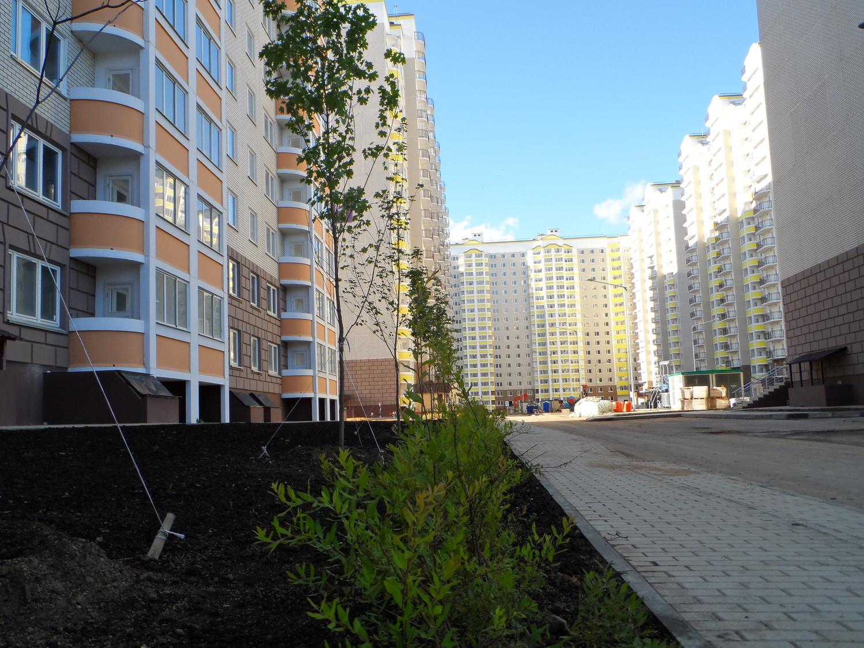 Московский, ул. Бианки 3
