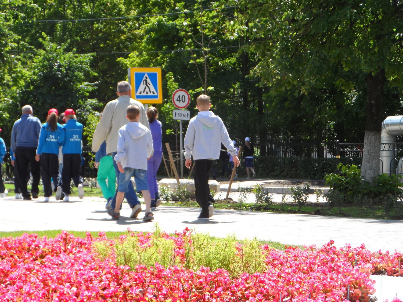 """Участники конкурса """"Безопасное колесо"""" Москва-2014, на улицах Московского"""