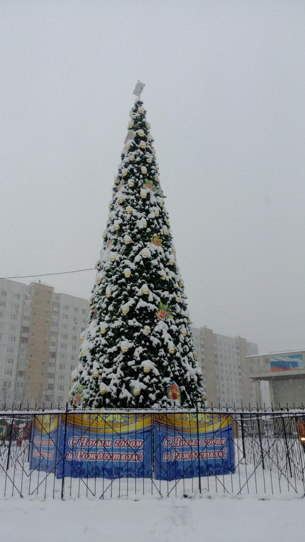 "Ёлка на площади перед ДК ""Московский"" (2014 - 2015)"