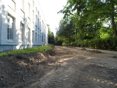 Ближний от школы ряд кустарника полностью уничтожен