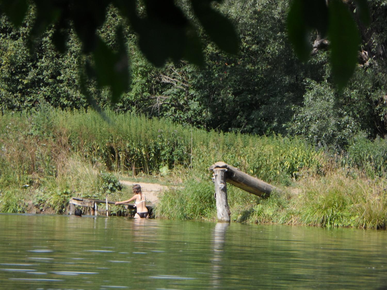 Пруд в деревне Мешково лето 2014 года