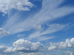 Небо и змеи )