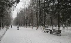 Декабрь, первый снег