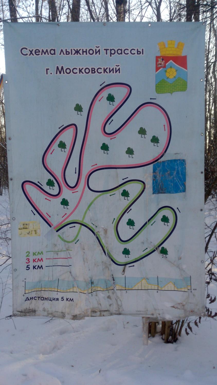Информационный баннер в лесу за 3 мкр.