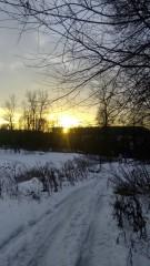Дорога вдоль Барановского пруда.