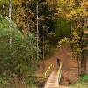 вход в лес в Граде