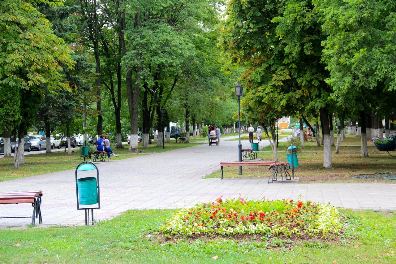 Аллея-бульвар-центр в пос Московский