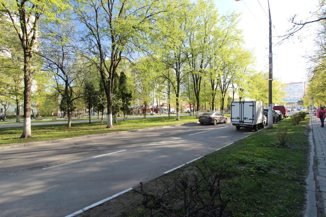 Дорога вдоль аллеи