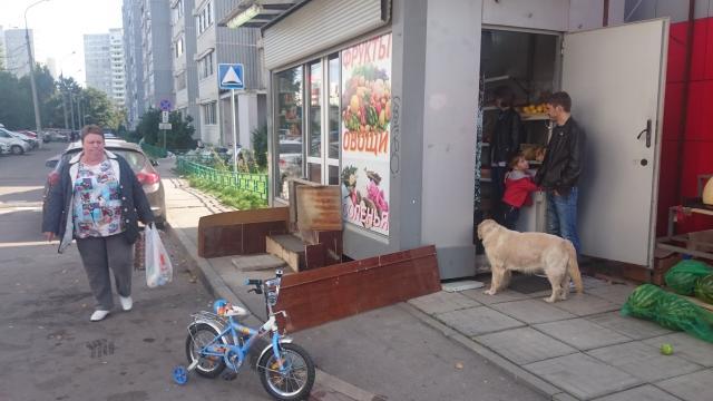 знакомства город московский московская область action